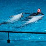 Дельфин с тренером