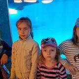 У аквариума с дельфинами